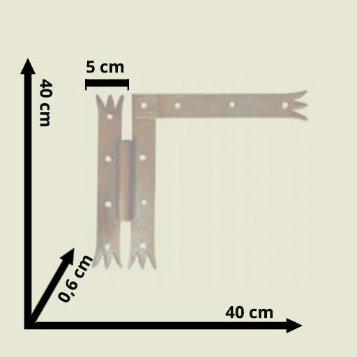 31 1 original medidas